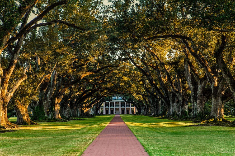 New Orleans: What You Need to See